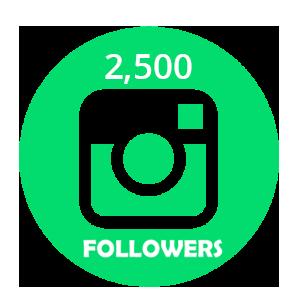 buy 2500 instagram followers