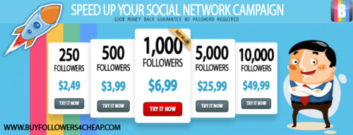 Which is the best website to buy Instagram followers and likes?